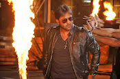 Hero Tarun Stylish Photos from Yuddham Movie-thumbnail-2