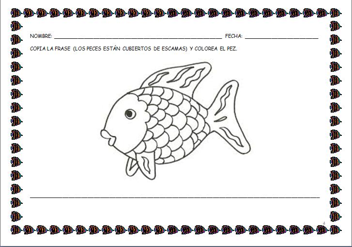 Conoce el mundo submarino: El pez Arcoiris