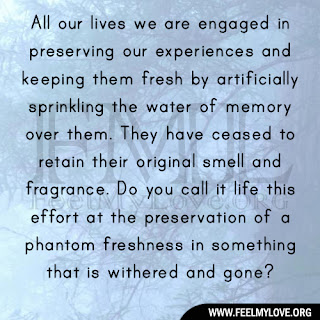 All our lives we are engaged in preserving
