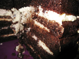 Close up of chocolate cake layered with cream