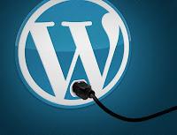 WordPress En Cok Kullanan 30  Eklentiler Burda !!!
