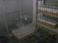 Ruangan inokulasi bibit jamur