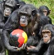 Whaddya mean penalty corner? WE don't think so and IT IS our ball...