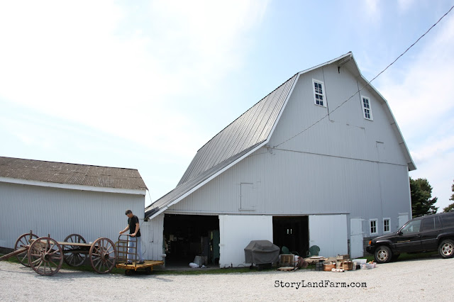 Grey Barn Farm
