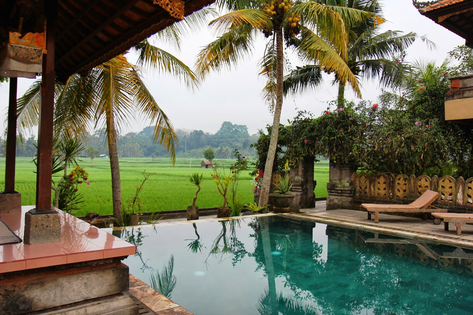 Where is fatboy bali green field hotel ubud - Hotels with saltwater swimming pools ...