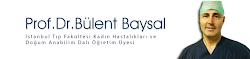 PROF.DR.BÜLENT BAYSAL'A ULAŞMAK İÇİN;