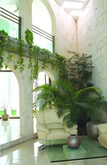 Jardines interiores vida ecofriendly for Jardines de pared para interiores