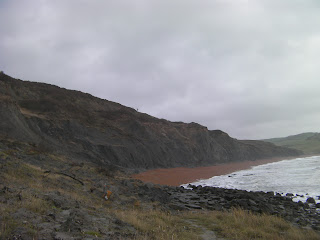 seatown beach from golden cap fossil collecting