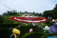 Labyrinthe d'Alice au pays des merveilles
