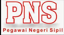 Remunerasi PNS Tahun 2014