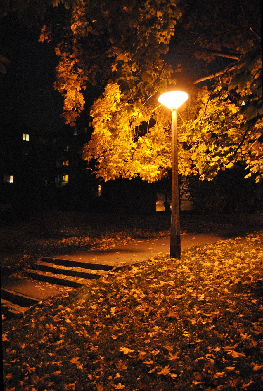 Autumn Night Autumn Posters Picture