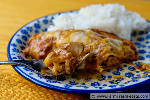http://www.farmfreshfeasts.com/2015/05/turnip-enchiladas.html