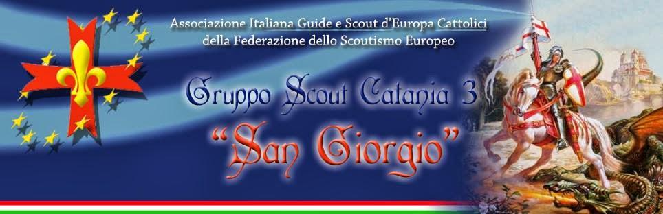"""Blog Ufficiale del Gruppo Scout F.S.E. Catania 3 """"San Giorgio"""""""