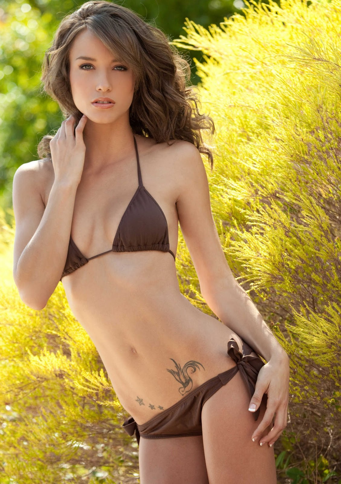 single chat rooms online free Lincoln