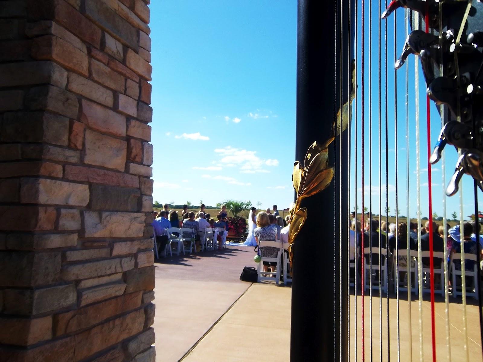 wedding music in springfield illinois harpist at erin�s