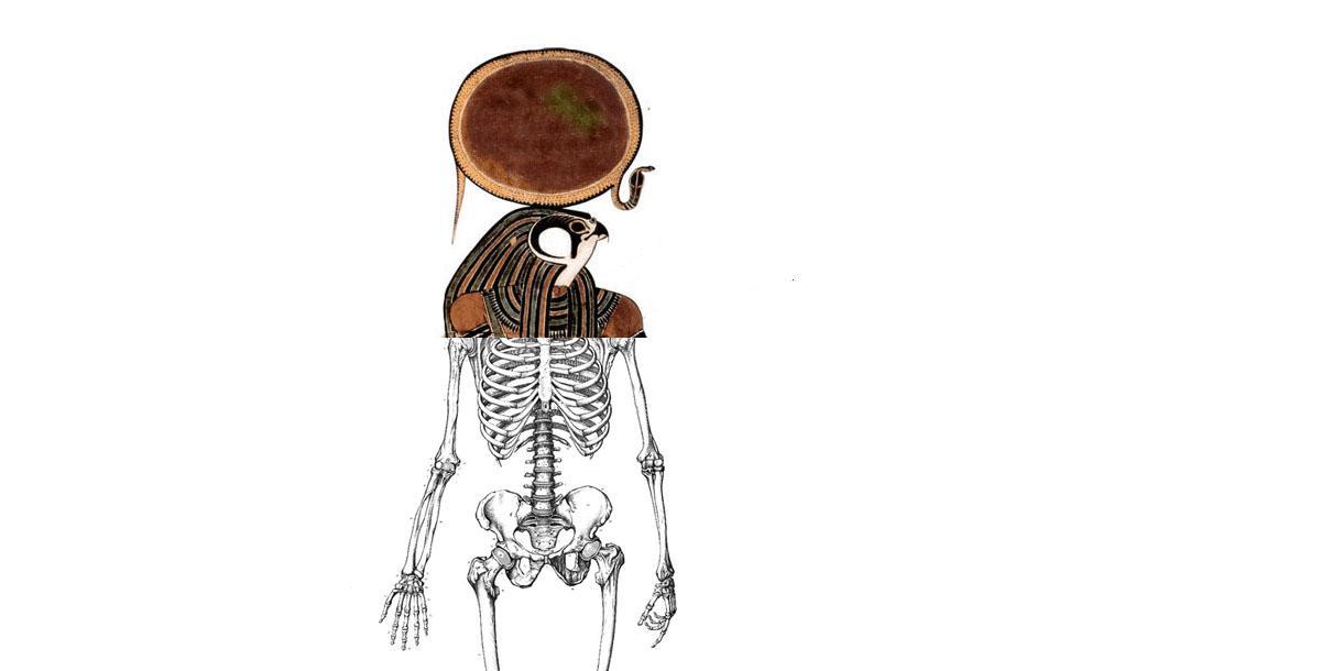 L'envol d'Horus