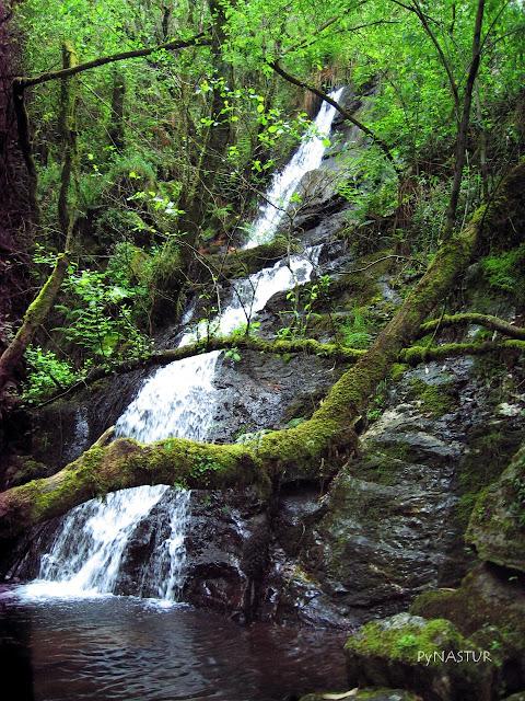 Senderismo Cascada A Pena Do Encanto Asturias