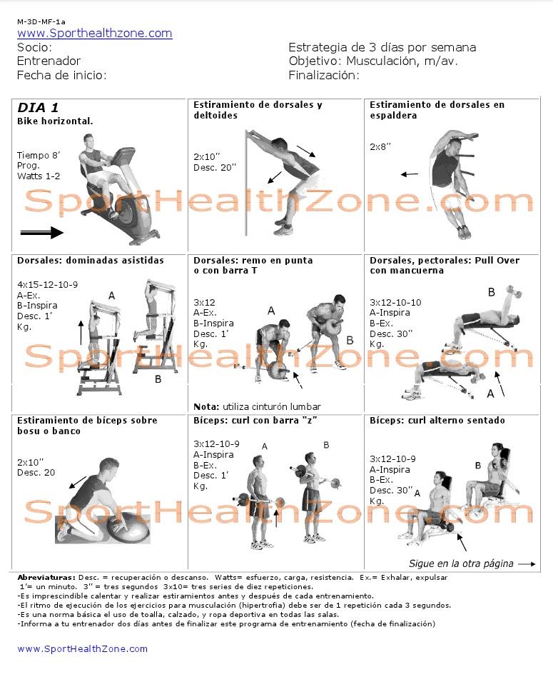 Rutina de ejercicios noviembre 2012 for Entrenamiento gimnasio