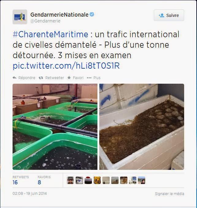 https://twitter.com/Gendarmerie/status/479551371952533504/photo/1