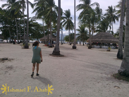 A visitor of Cowrie Island, Honda Bay