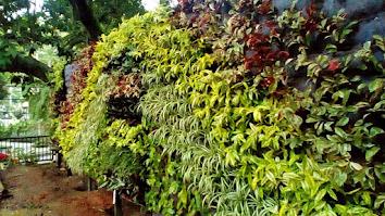 Jasa Pembuatan Taman Vertikal,Vertikal Garden