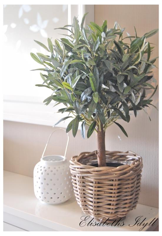 Oliventre ikea