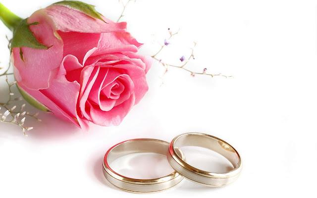 Rosa Rosada Cásate Conmigo - Imagenes de Amor para Enamorados