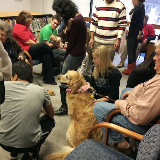 Students enjoying therapy dogs during Student Appreciation Day.