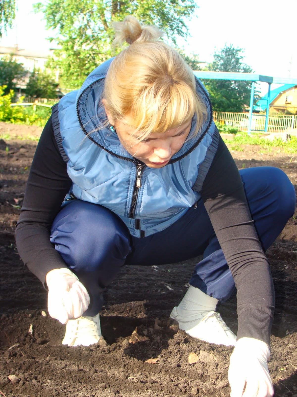 Картинки по запросу работы в саду осенью