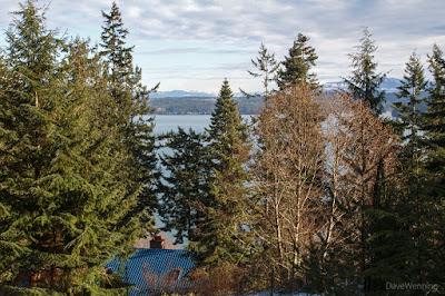 Looking East over Skagit Bay