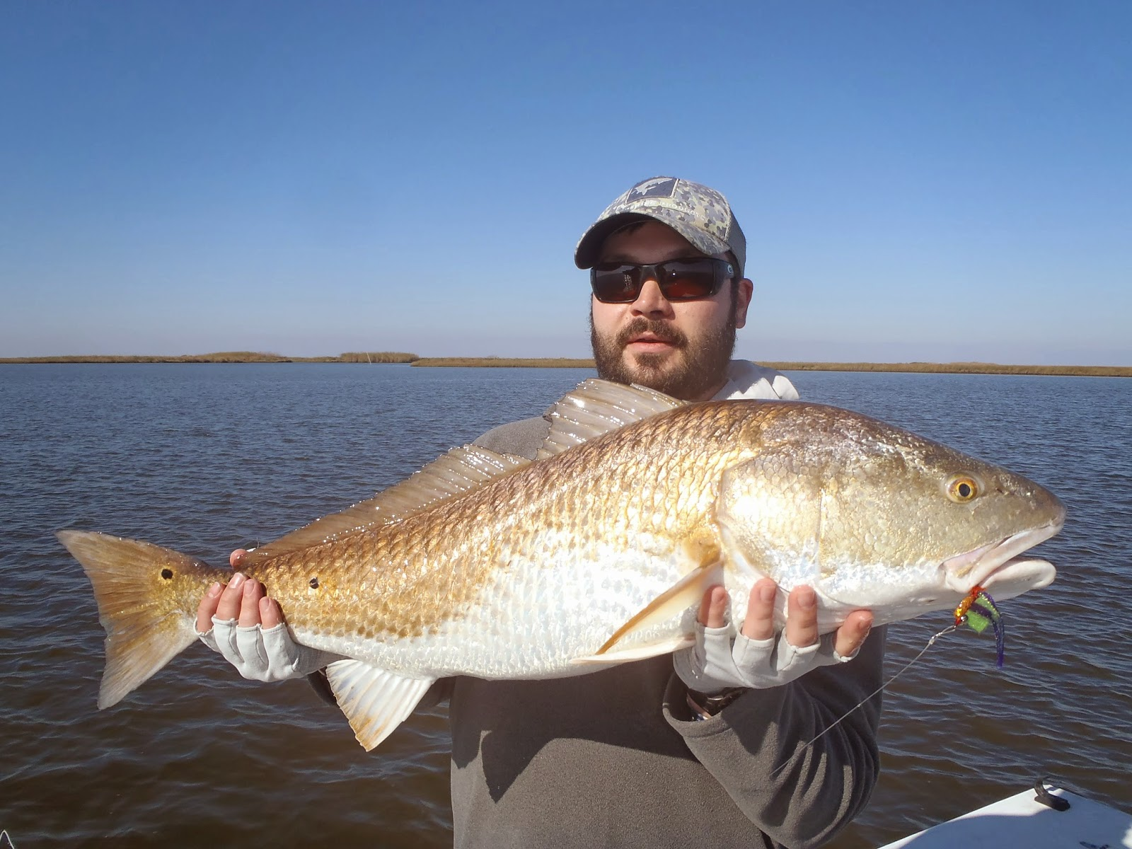 Redfishing louisiana a guides journey louisiana fly for Louisiana redfish fly fishing