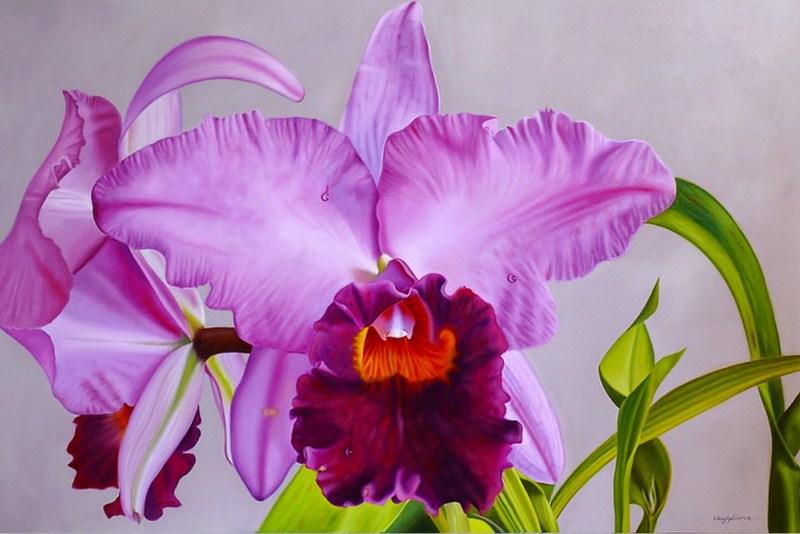 Orquídeas Pintadas en Óleo Cuadros de Flores Pintadas en Óleo Sobre Lienzo Pinturas de Orquídeas Flores OrquídeasBonitas Pinturas de Orquídeas