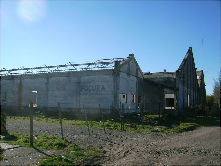 History of an Unsustainable Mill in Curacautin, Chile (video in Spanish, click picture)