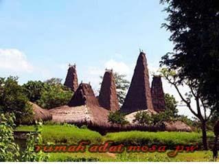 Rumah Adat Mosa Lakitana Nusa Tenggara Timur,Keberagaman dan keunikan rumah adat di Indonesia yang terkenal di mata dunia