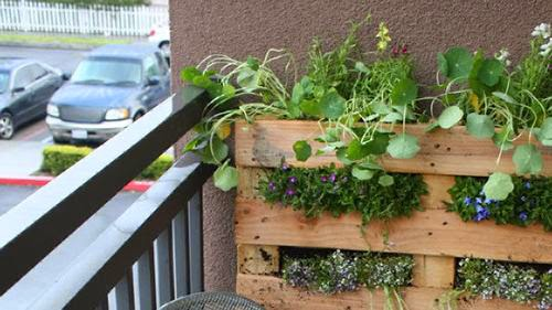 Apartment balcony garden designs for Balcony vegetable garden ideas