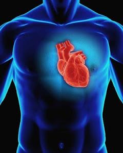 Cardio Protegen