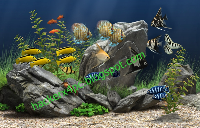 Dream Aquarium Screensaver V1.234