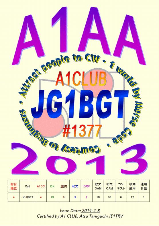 A1AA 2013
