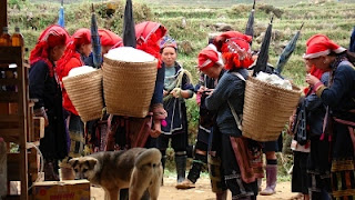 Dao people cultivation activities
