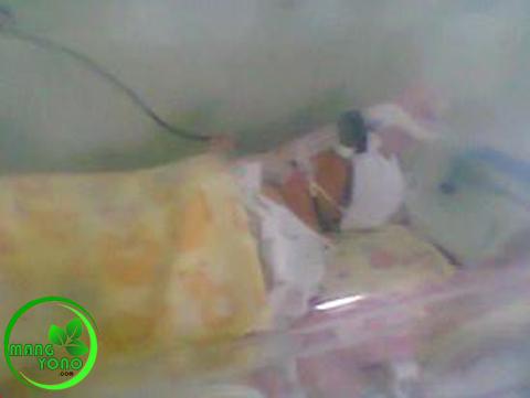 Si Anak di inkubator di ruang NICCU.