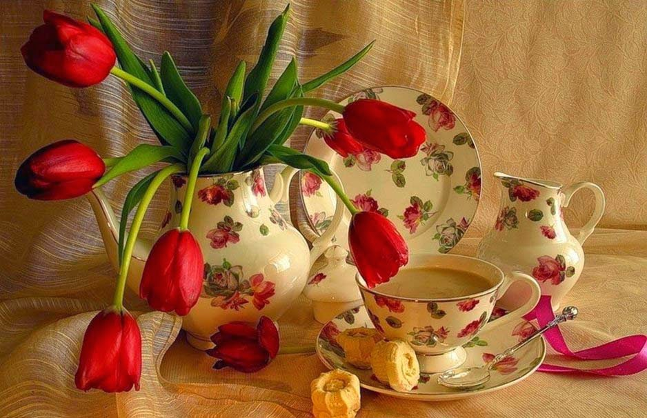 red-tulip-good-morning-image