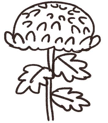 菊のイラスト(花) モノクロ線画