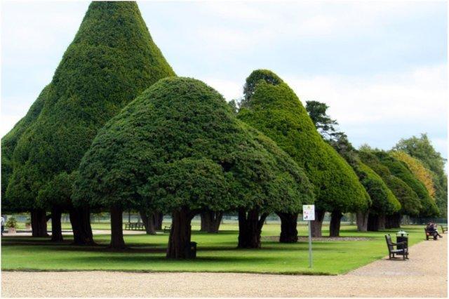 Jardines del Palacio de Hampton Court Hampton Court, Londres