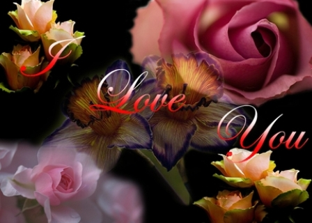 Beautiful Wallpaper Of Love For Mobile : My Box Wallpapers: Download Free Most Beautiful I love you Desktop Photos