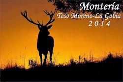 MONTERÍA TESO MORENO-LA GOBIA