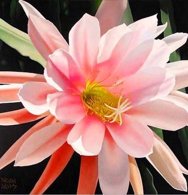 cuadro-flores-oleo