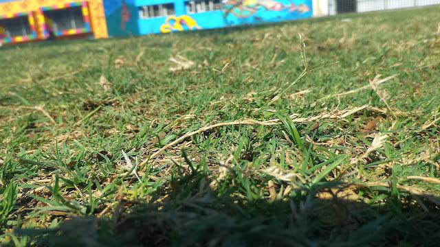 Sample shot taken from Zenfone Zoom