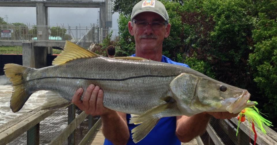 On foot angler flare hawk fishing for snook for Snook fishing lures