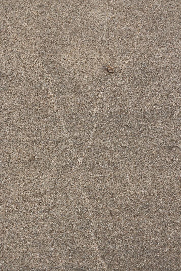 subtle wave marks in sand