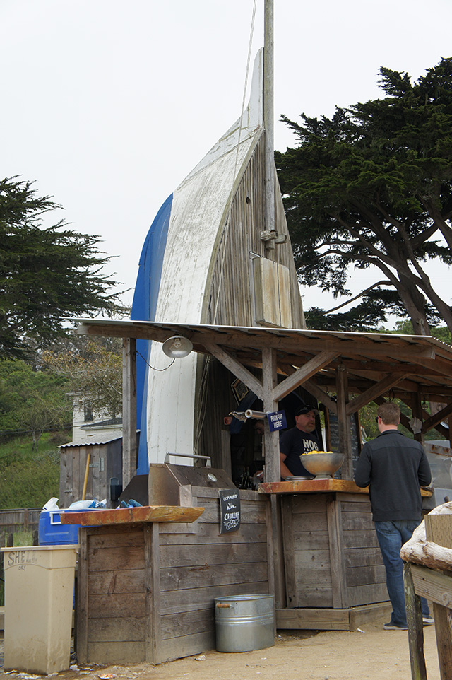 The bar at Hog Island Oyster Farm